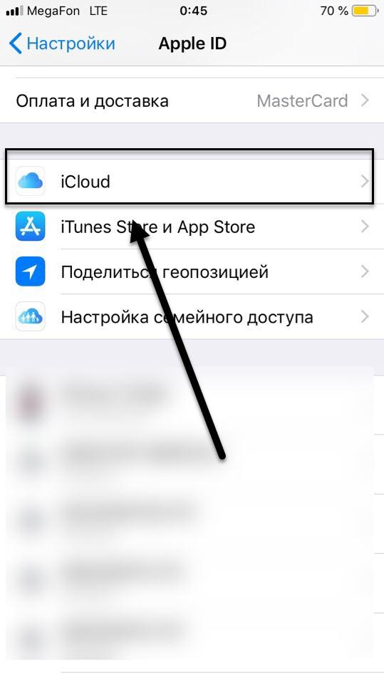 Пункт iCloud