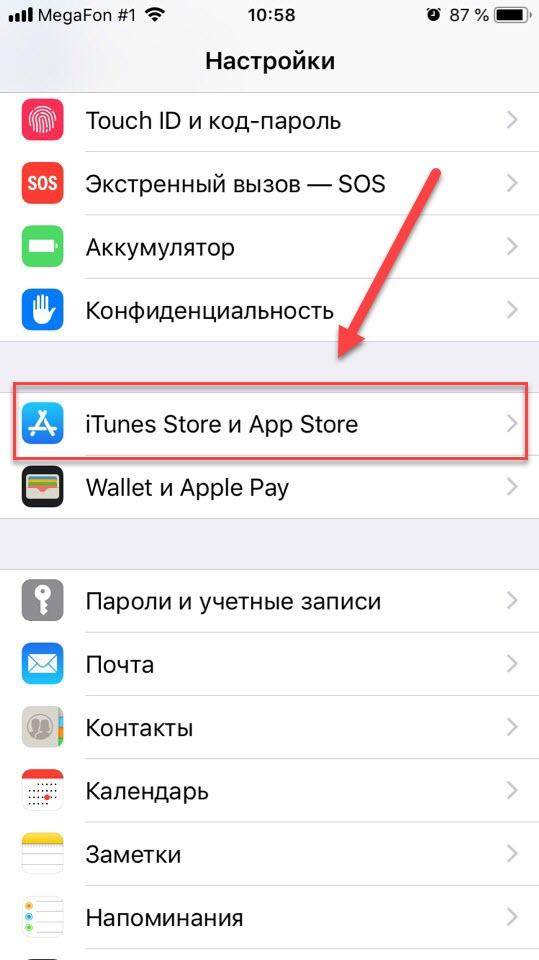 Пункт меню iTunes и Apple Store