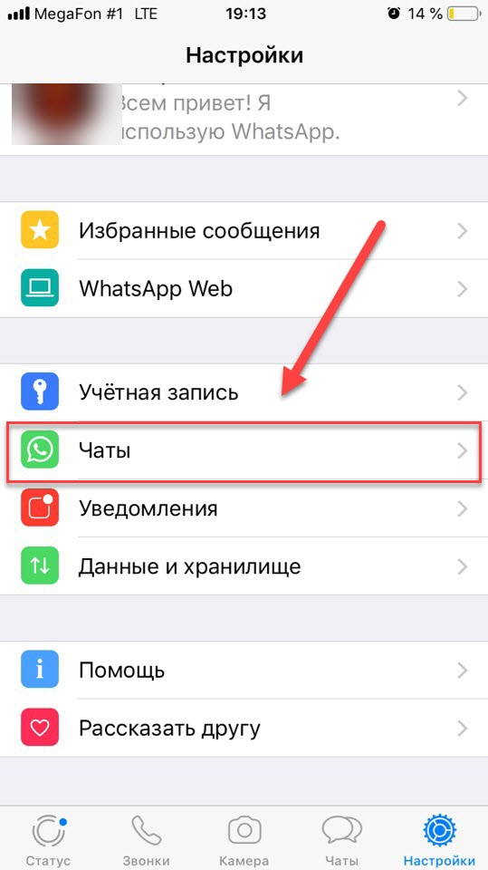WhatsApp Чаты на айфоне