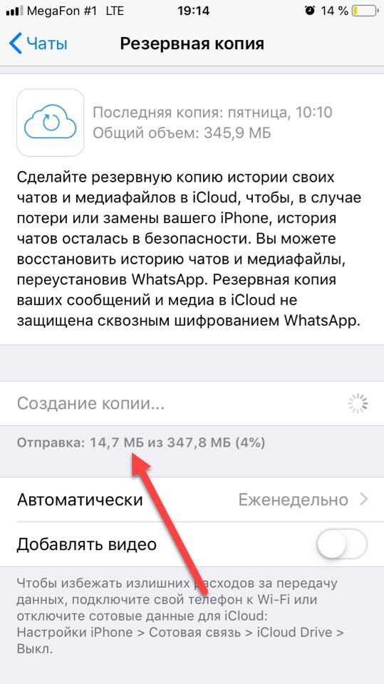 WhatsApp процесс создания бекапа