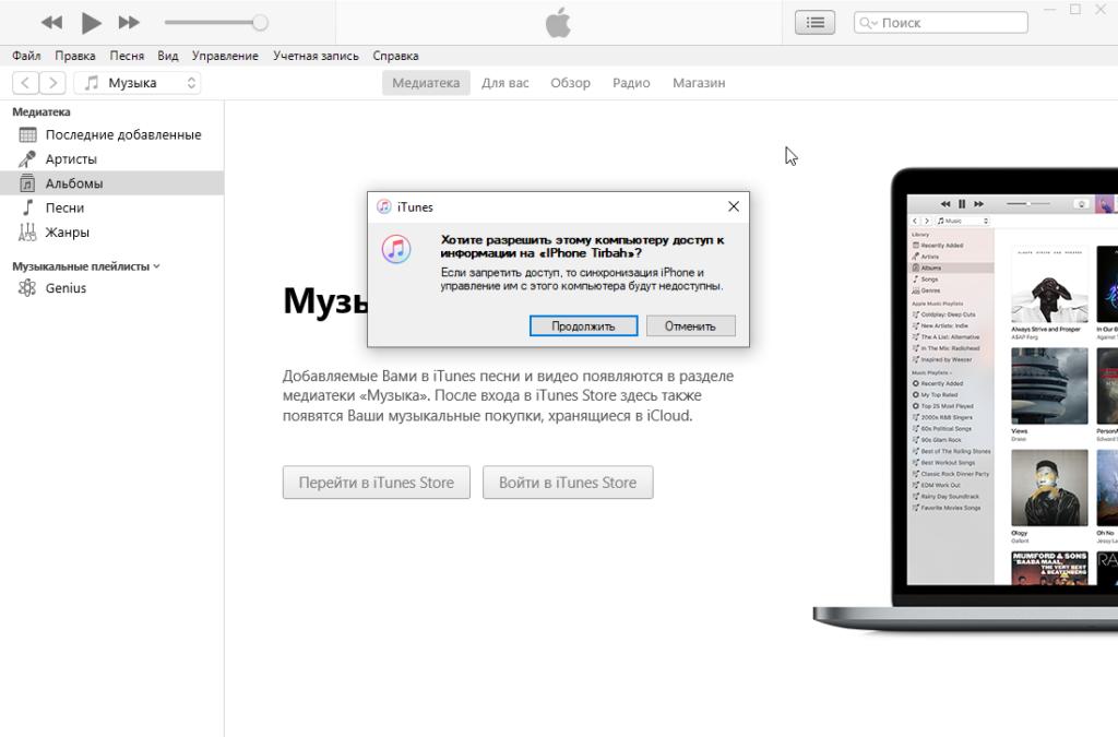 Подключение айфона к iTunes