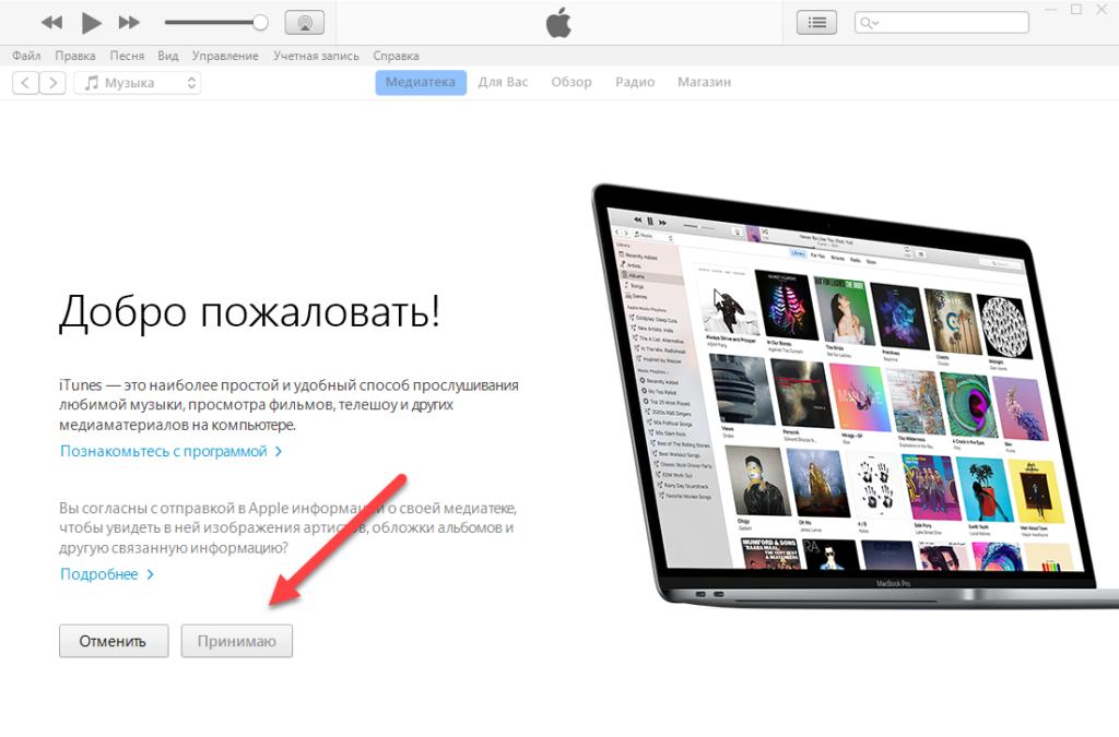 iTunes принимаем условия