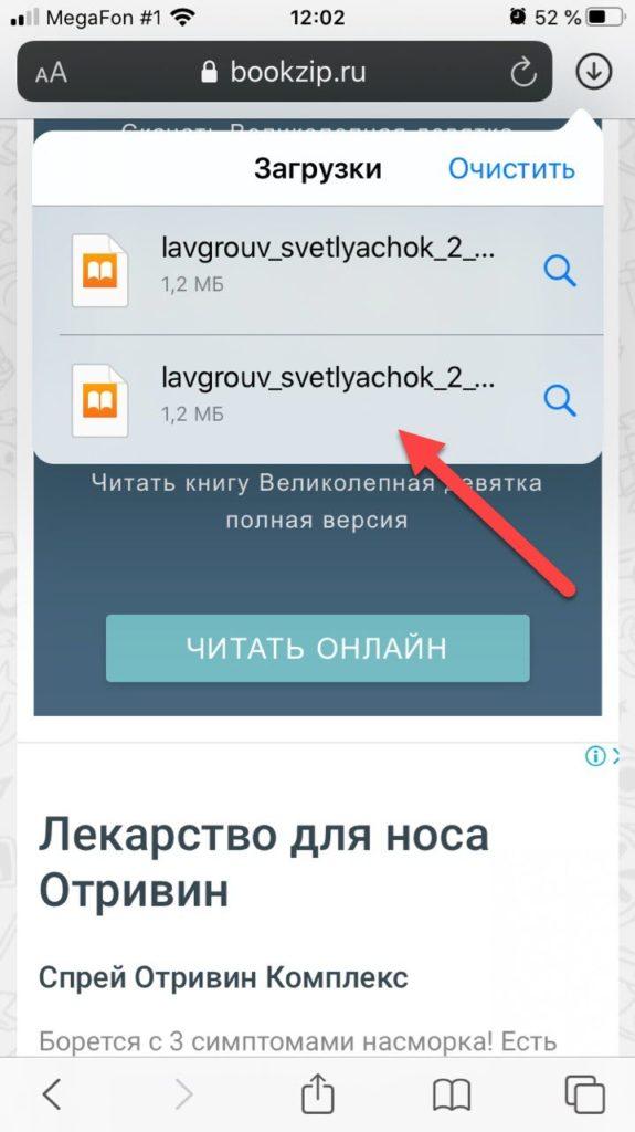 Список загрузок в Safari