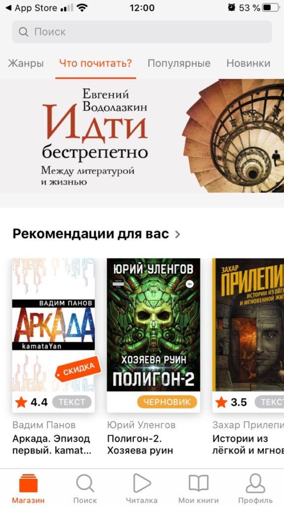 Litres список книг