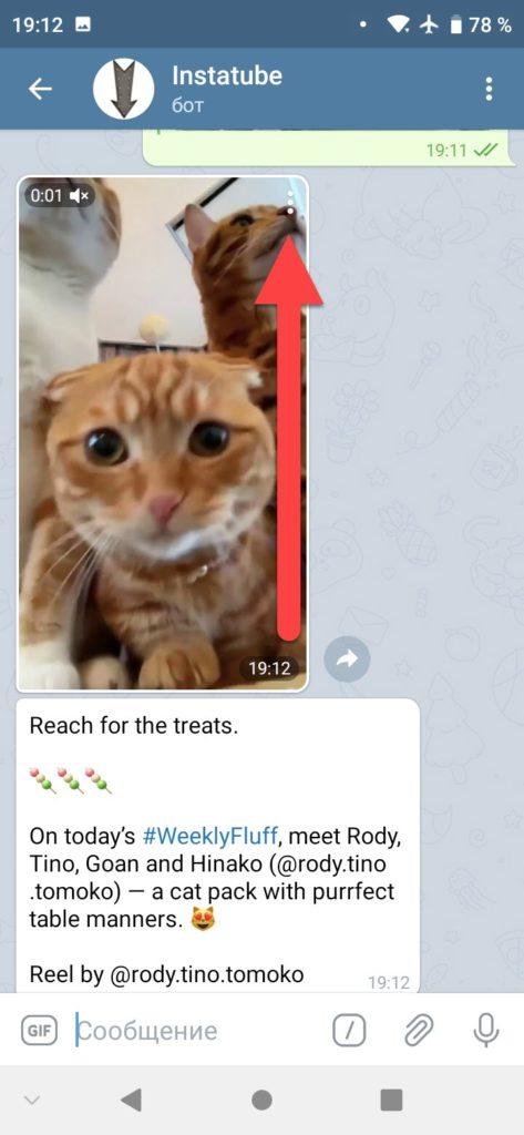 InstaTube бот Телеграм - подписываемся