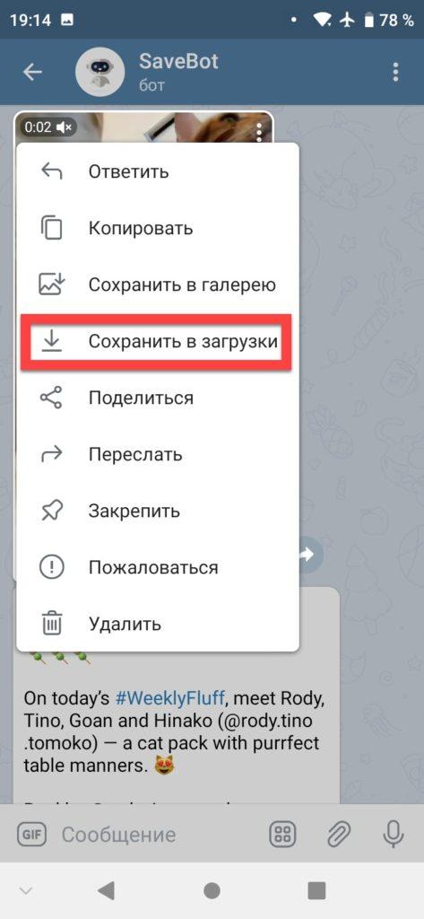 SaveBot бот телеграм - сохранить видео Инстаграм