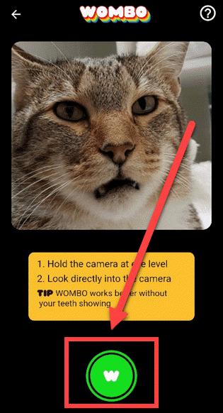 Приложение WOMBO Андроид наводим камеру на лицо