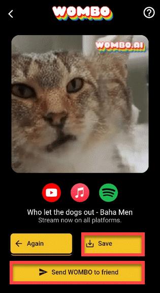 Приложение WOMBO Андроид готовый результат